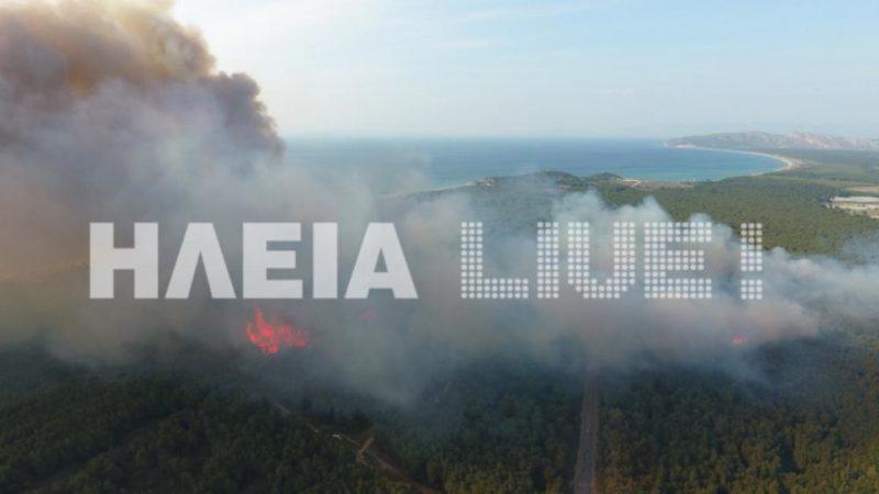 Μεγάλη πυρκαγιά μαίνεται στο δάσος της Στροφυλιάς